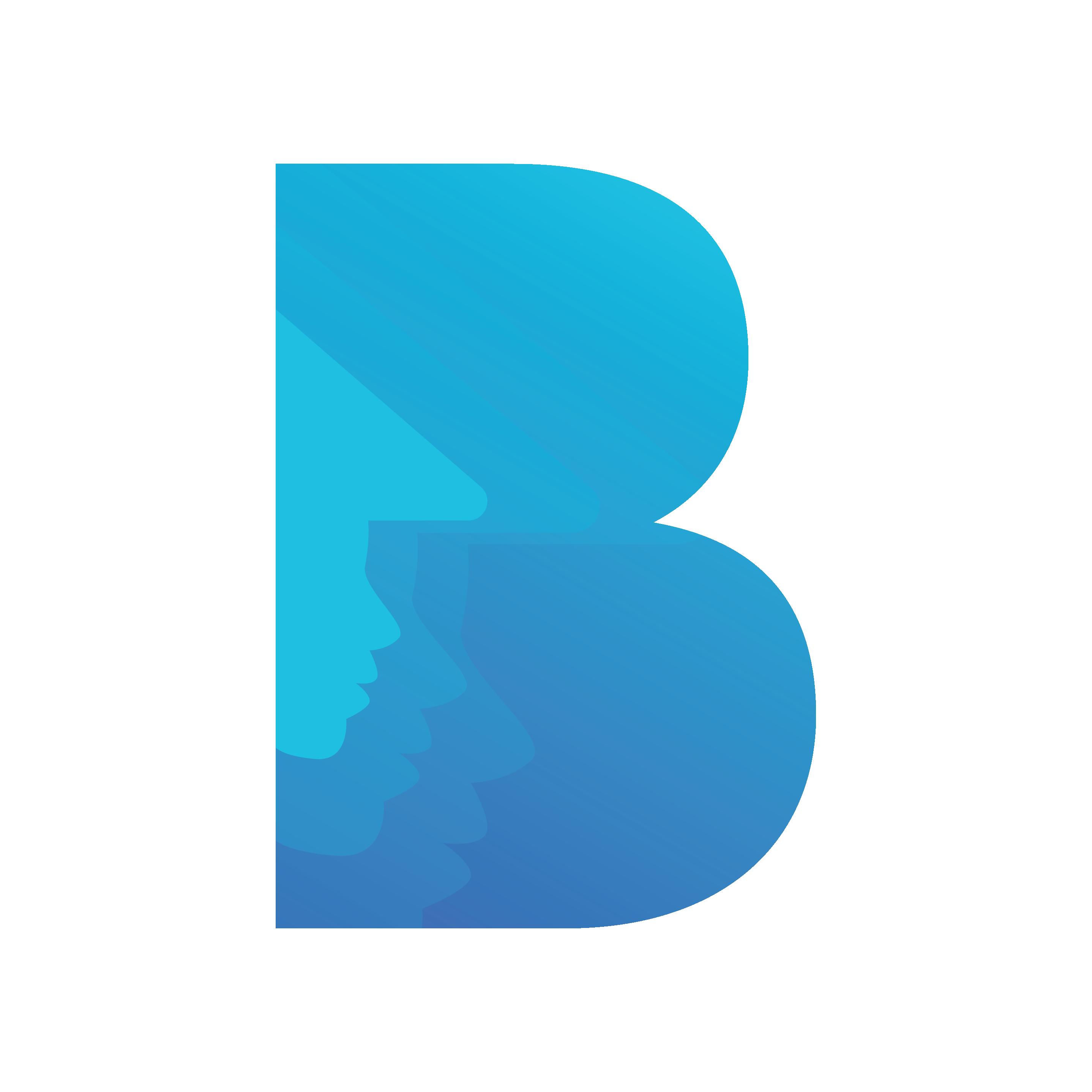 Baiyarin Logo